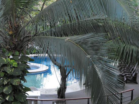 Playa Hermosa Bosque del Mar Hotel: Hotel pool