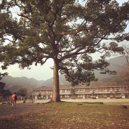 秋月 中学校