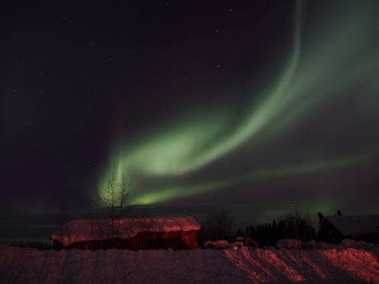 Bettles Lodge: Northern Lights outside the Lodge-3