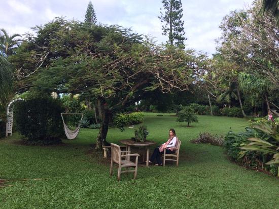 Haiku, Χαβάη: photo5.jpg