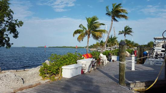 Marathon Key Beach Club: IMG-20160110-WA0007_large.jpg