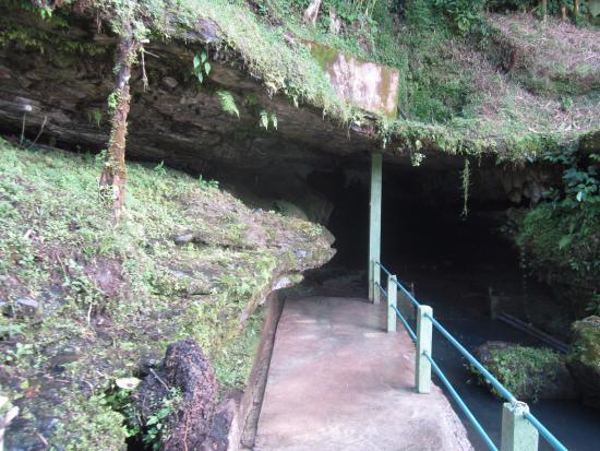 Jumandi Caves : Entrada de la caverna