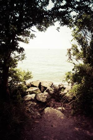 Point Pelee National Park: Framed