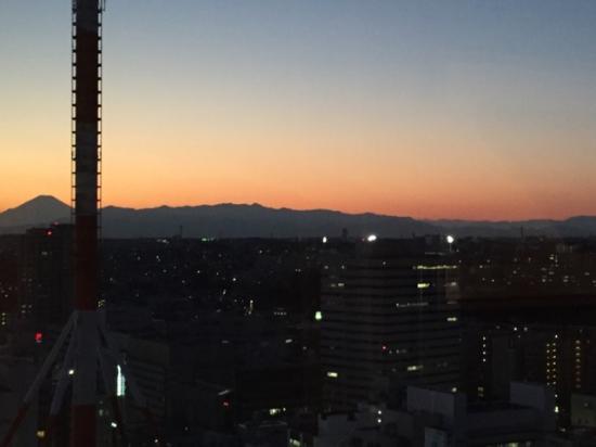Yokohama Bay Sheraton Hotel and Towers : 眺望