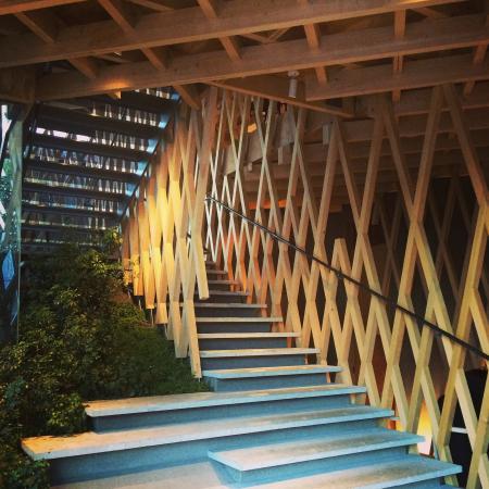 Showcase Tokyo Architecture tours
