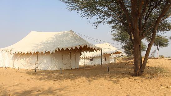 Wild Desert Resort  a unit of Rao Bikaji Group : swiss tents