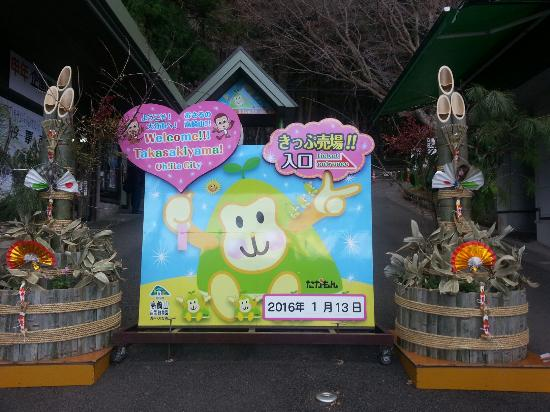 20160113_145220_large.jpg - Picture of Takasakiyama Natural Zoo, Oita - TripA...