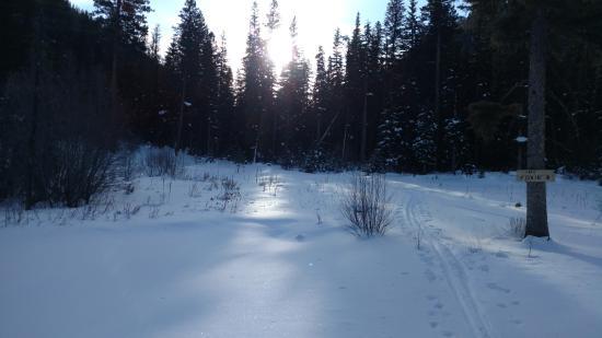 Lost Trail Hot Springs Resort: Snowshoeing
