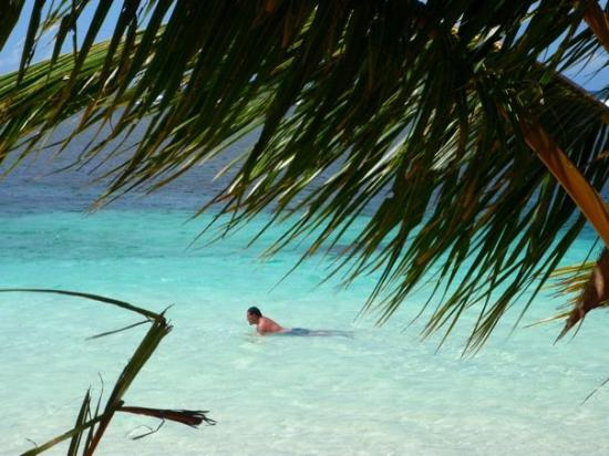 Tanu Beach Fales: Swimming out the front of our Fale