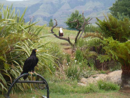 uKhahlamba-Drakensberg Park, Zuid-Afrika: Just amazing