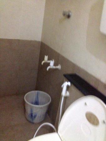 Paradise Guest House: bathroom