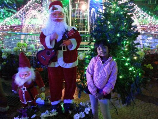 Park Street Kolkata During Christmas.St Francis Xavier S School Park Street On Christmas Eve