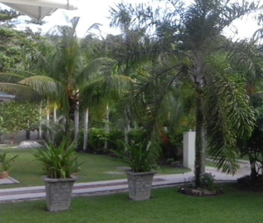 Амити, Сейшельские острова: vista del giardino