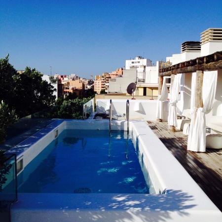 Swimming Pool Picture Of Hm Balanguera Palma De Mallorca Tripadvisor