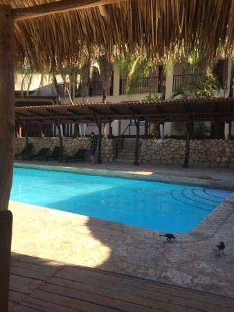Hotel Coco Beach & Casino: pool