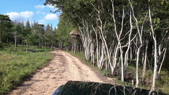 Prachuap Khiri Khan Province, Thailand: Trail into Park