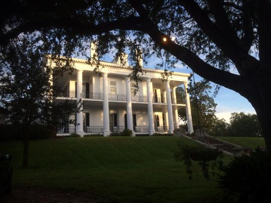Dunleith plantation