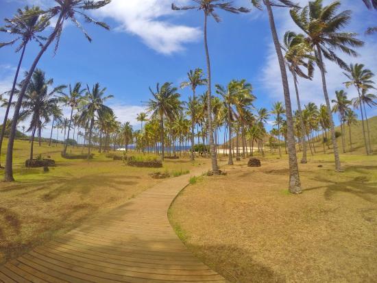 Tea Nui - Cabanas y Habitaciones: photo0.jpg