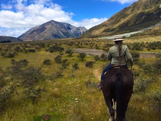 Grasmere Lodge : Horseback riding with Heather