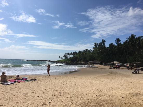 Palm Paradise Cabanas & Villas Beach Resort Tangalle Photo