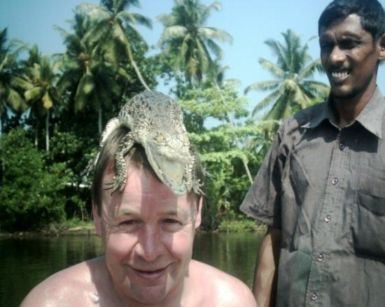 Hotel Mermaid & Club: Baby Croc - A boat ride down the river & through mangroves