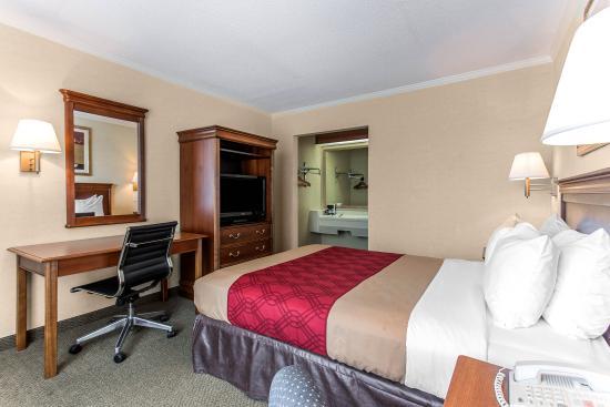 Econo Lodge: Single Room