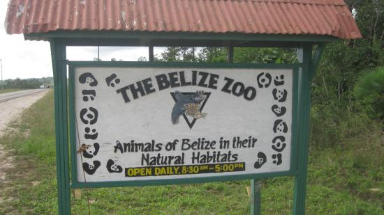 The Belize Zoo: The sign - wait for the bus here