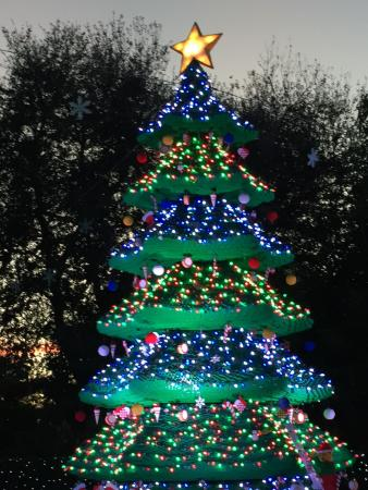 Large LEGO tree in PARK