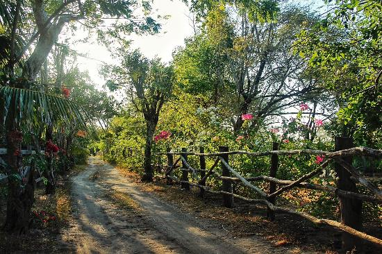 Tola, Nikaragua: photo5.jpg