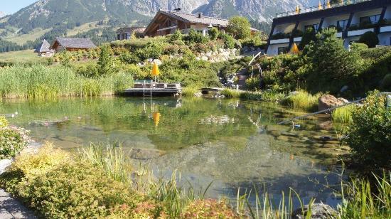 Schwimmteich bild von bergossene alm resort dienten am for Schwimmteich graz