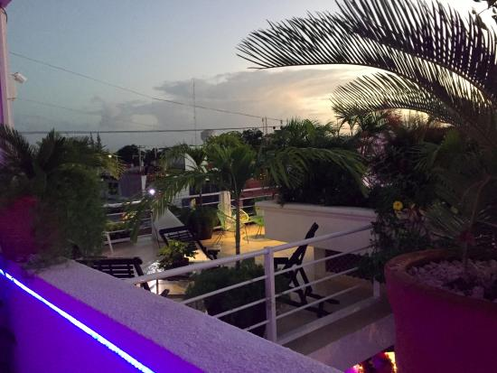Hostelito Cozumel: The terrace!