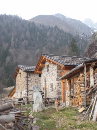Agriturismo Ferdy d'Alpe