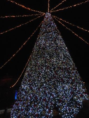 longleat singing christmas tree - Singing Christmas Tree Lights
