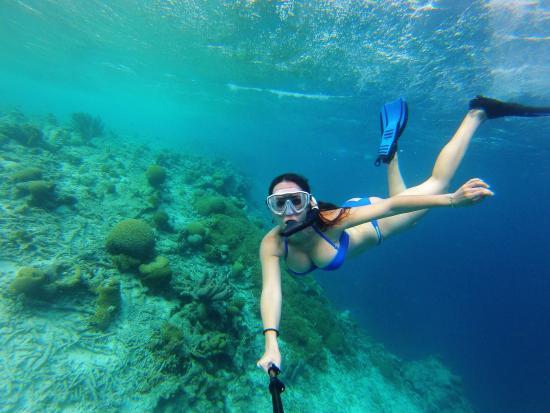Bonaire: photo0.jpg
