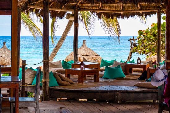 La Zebra Beach Restaurant and Bar