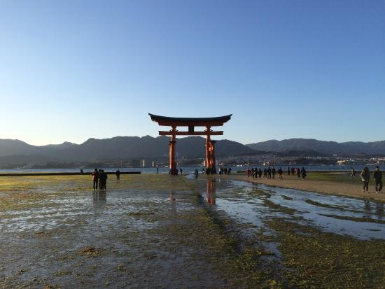 photo5.jpg - Picture of Miyajima, Hatsukaichi - TripAdvisor