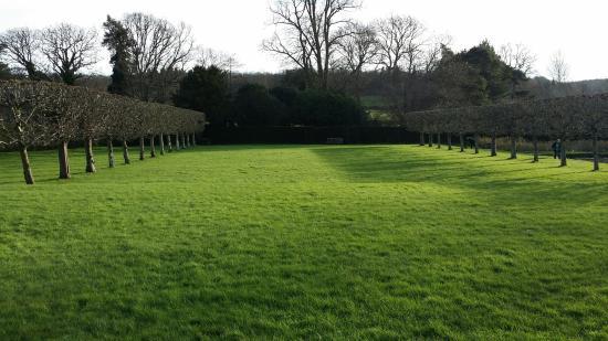 Burwash, UK: Garden
