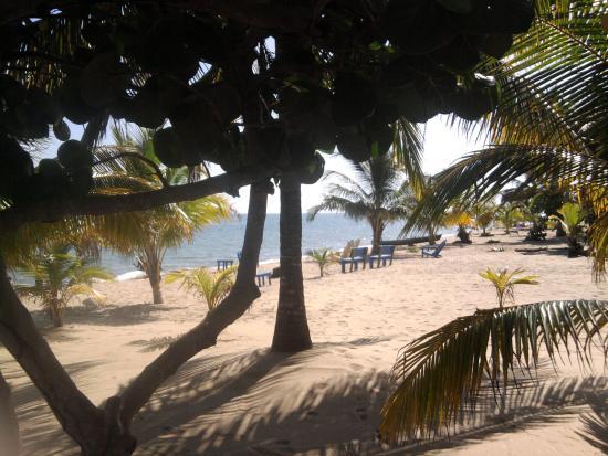 Tipple Tree Beya: Tipple Tree beach