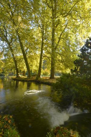 Parc et Jardins du Chateau d'Acquigny: Cascatelle sous les platanes