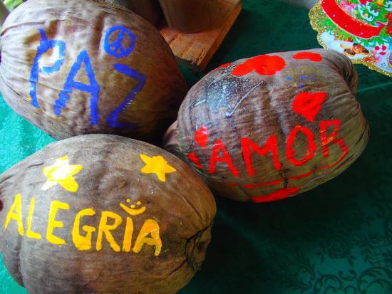Cabinas Tortuguero : Paz, amor y alegria
