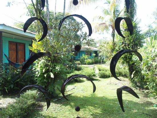 Cabinas Tortuguero: Garden