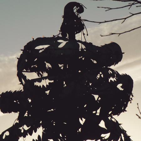 Tullow, Ierland: Carlow's famous Liberty Tree remembers 1798 in Carlow