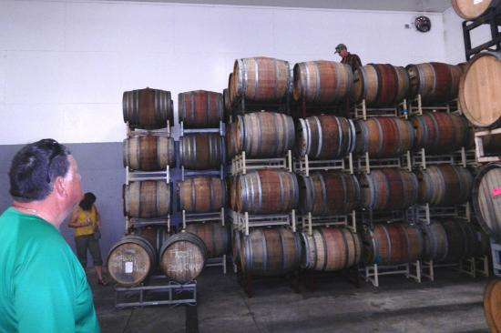 Carlton, OR : Host climbs the barrels to get sample of aging wine