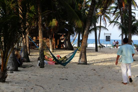 Poc-Na Hostel: place for hammocks and parties