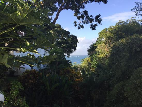 Bacolet Bay, Τομπάγκο: photo8.jpg
