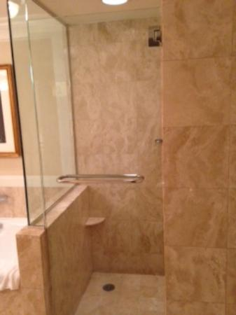 The Ritz-Carlton New York, Central Park: Spacious shower