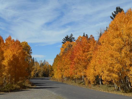 Grand Mesa: Lands End Road