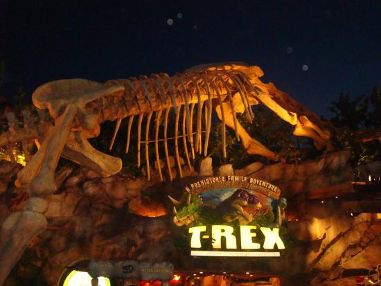 Fachada picture of t rex orlando tripadvisor for T rex location