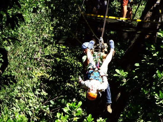 The Congo Trail Canopy Tour: zipping