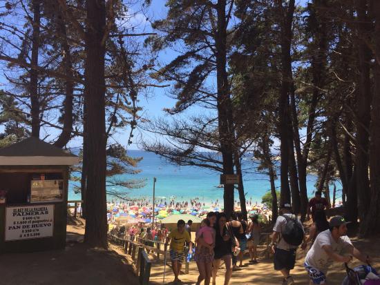 Playa Canelo: photo4.jpg